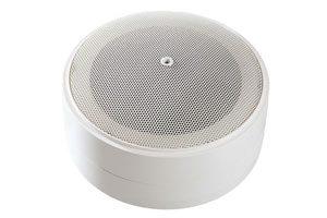 component-loudspeaker